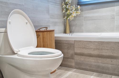 low-flow-toilet