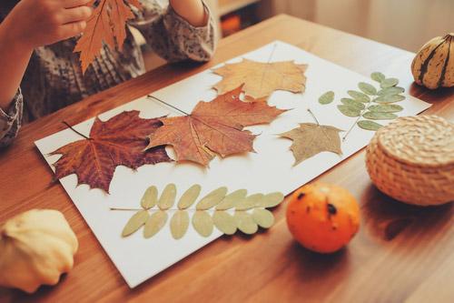 Creating DIY autumn crafts