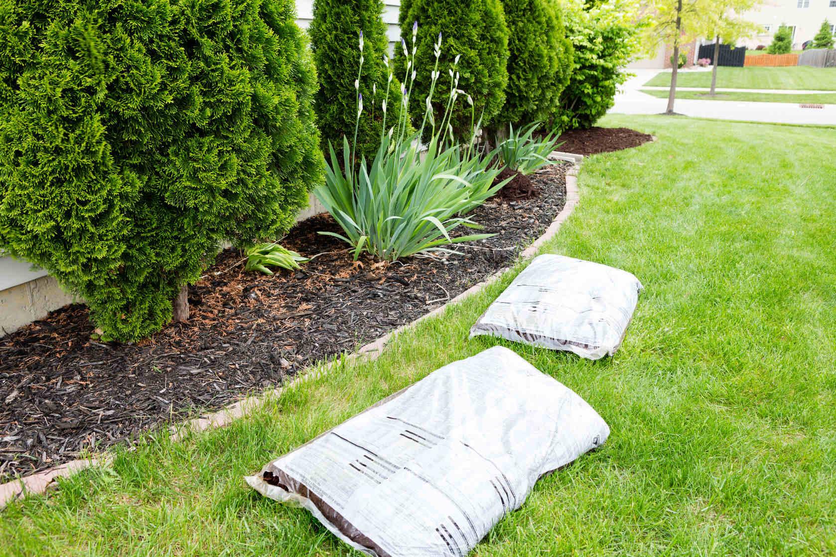 energy efficient landscaping