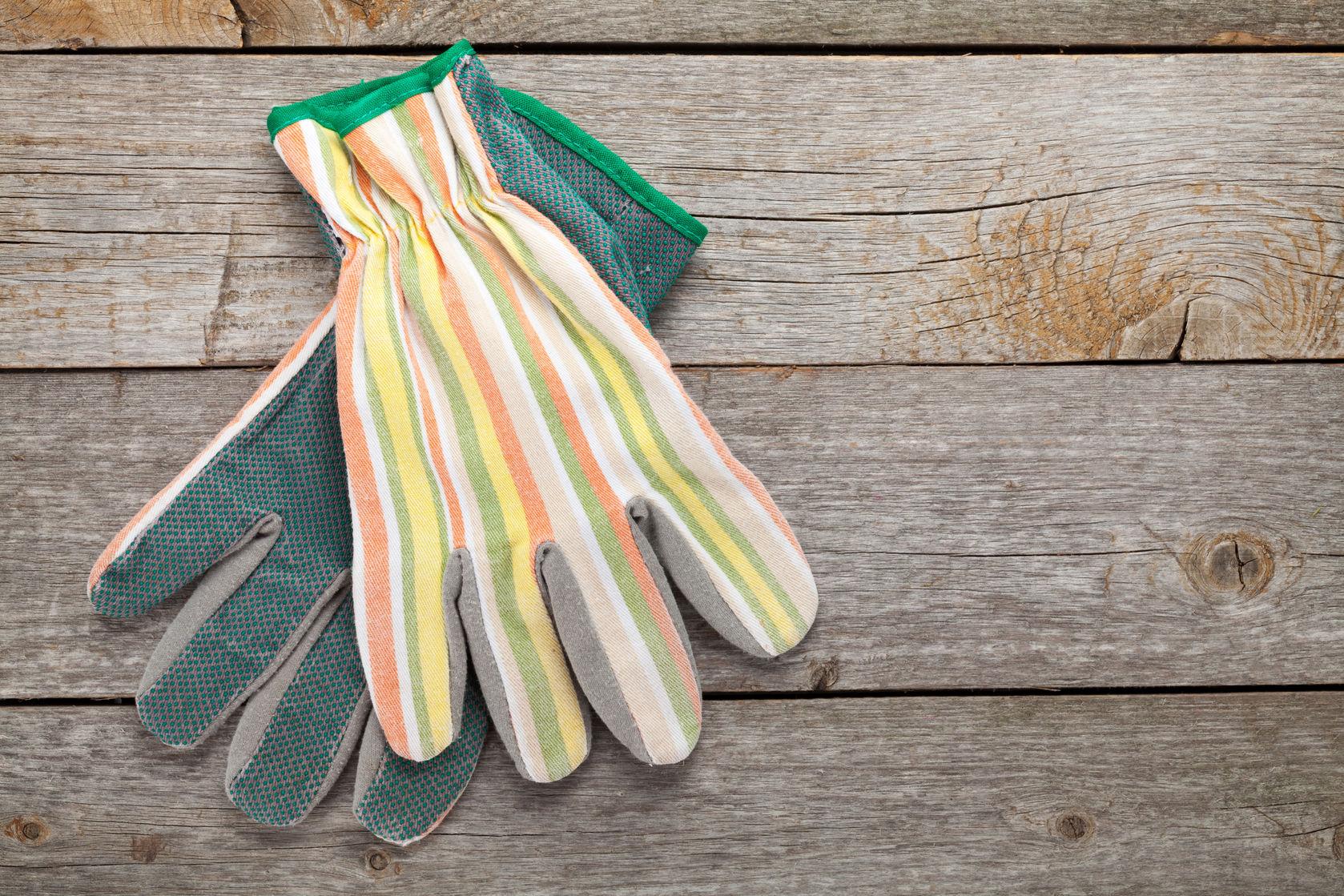 gloves garden tools