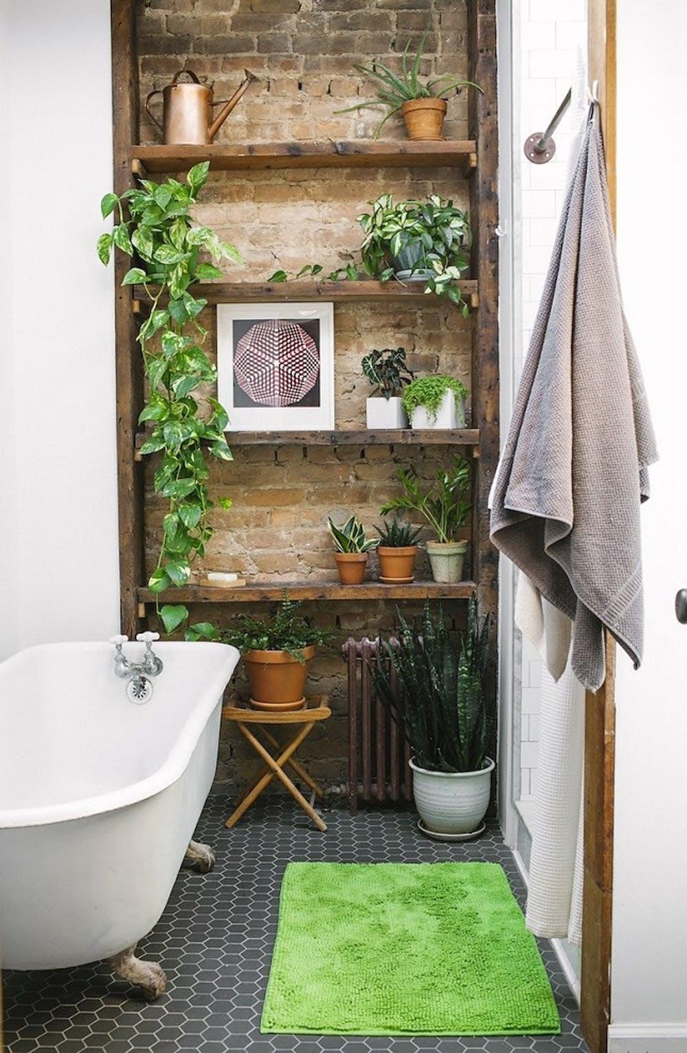 Nature on brick wall