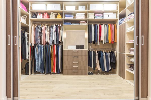 Closet organizer in the home