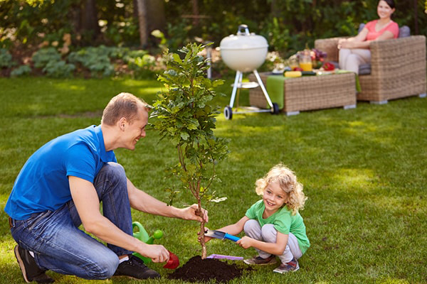 Plant tree for Mother's Day