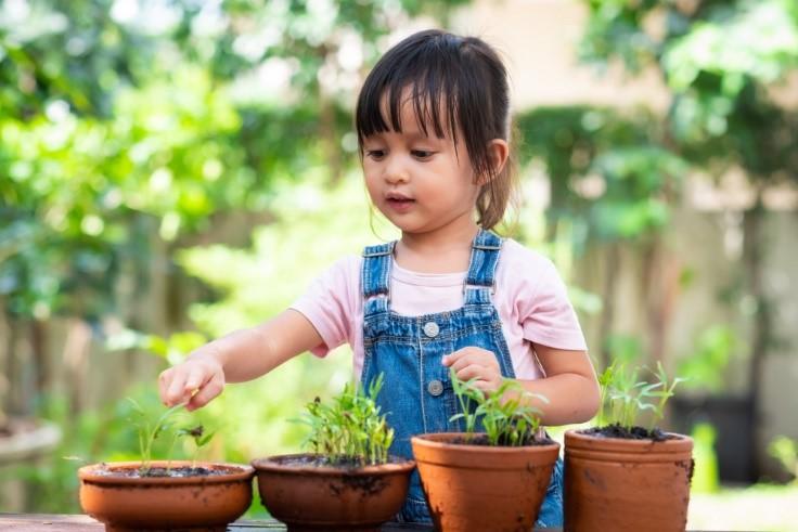 Child potting plants