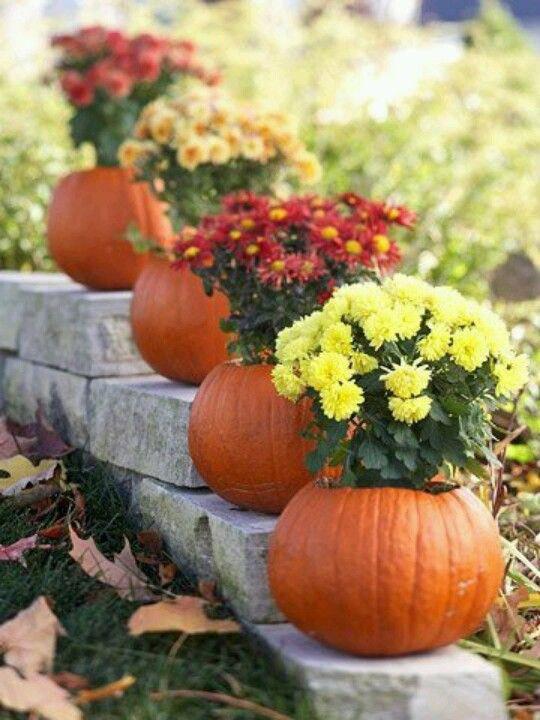 Pumpkin pots crafts