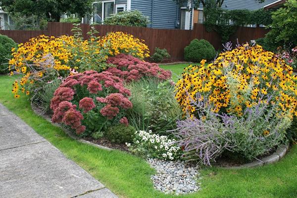 Garden in yard via David Hymel, Rain Dog Designs