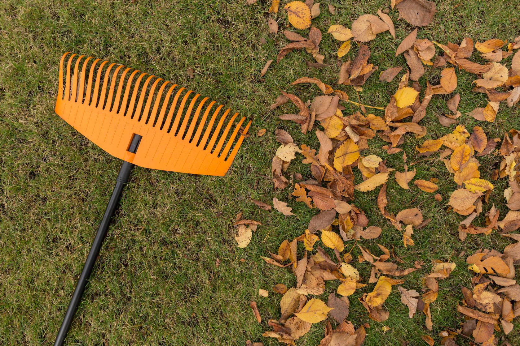 rake tools garden