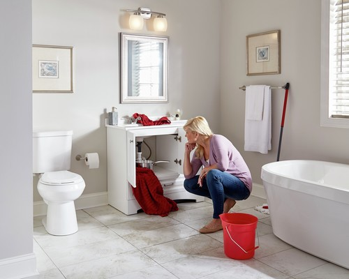 What To Do When You Find Mold Under The Sink Home Matters Ahs