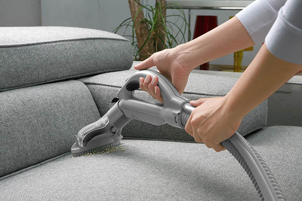 Woman Vacuums Couch Cushions