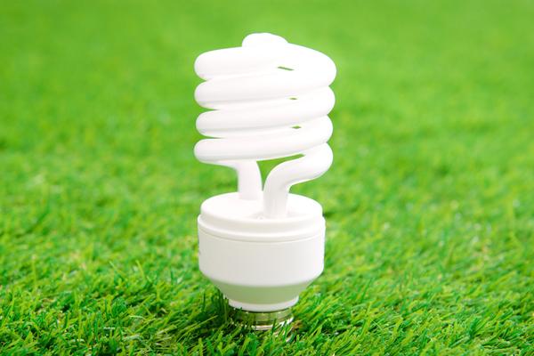 Light bulb in grass