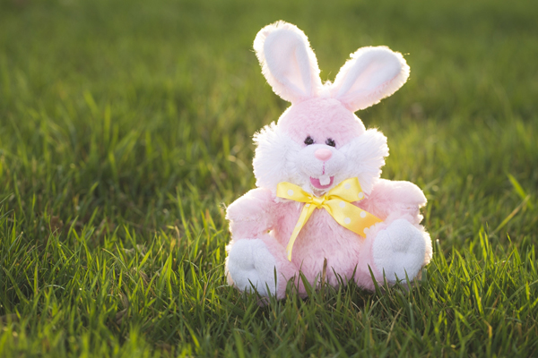 Easter Egg Hunt Activity - Prize