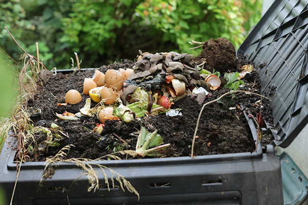 Compost with Food Scraps and Yard Materials