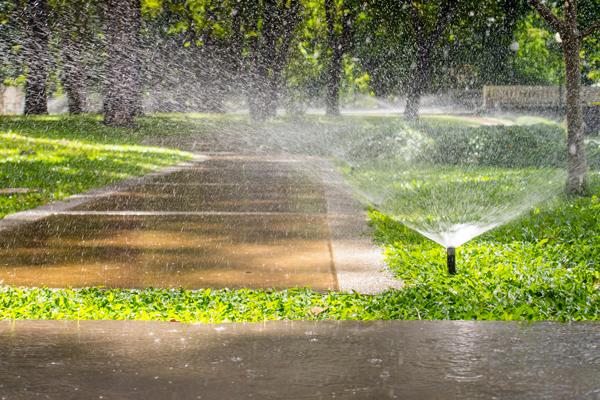 Home Sprinkler