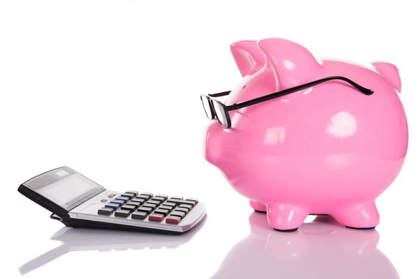 Piggy Bank Staring at a Calculator