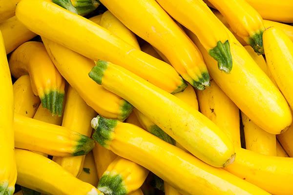 in-Season Yellow Squash